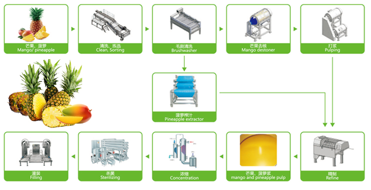 Mango Pineapple Fruit Processing Line